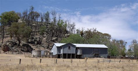 Shering Shed by File Kyeamba Shearing Shed Jpg Wikimedia Commons