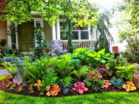 how to plant a backyard garden best 20 front yard landscaping ideas on yard