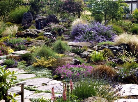 rock garden perennials rock garden perennials beautiful rock garden plants pink
