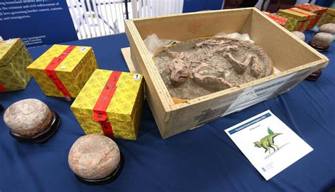 fossil aren memo sky 001 dinosaur fossil smuggler at tucson gem show convicted