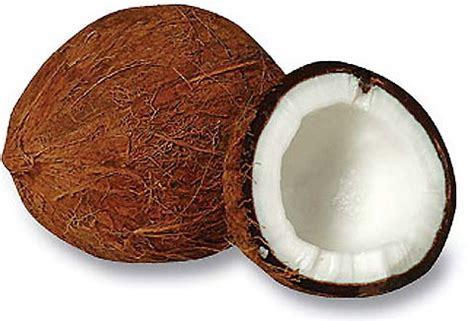 Harga Sabut Kelapa Per Kg analisa bisnis minyak goreng kelapa vco produk olahan