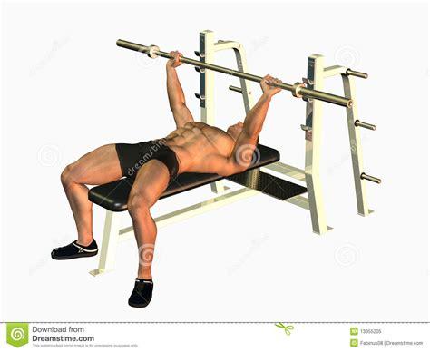 bodybuilding bench press form bodybuilding bench press form 28 images barbell