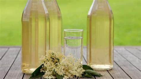 rezept holunderbluetensirup selbst herstellen frag mutti