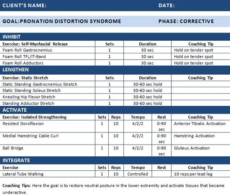 strength program template 15 best nasm sle exercise programs images on