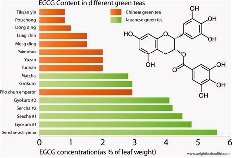weight loss green tea green tea extract weight loss supplement does it work
