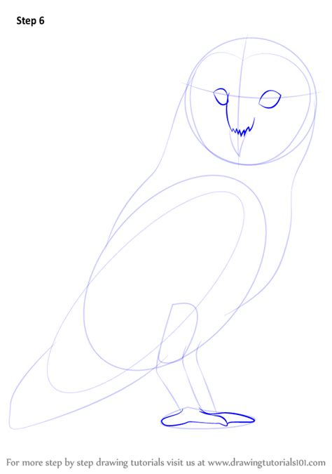 how to draw doodle owl learn how to draw a barn owl birds step by step