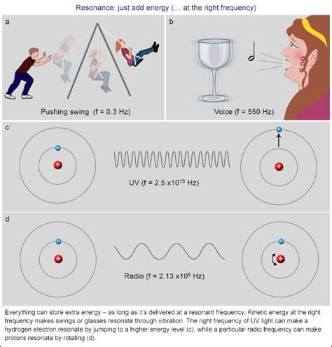 swing resonance resonance from swings to subatomic strings bernie s