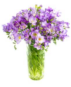 Mother Day Flowers Delivered - fortnightly flower delivery freesias lilac