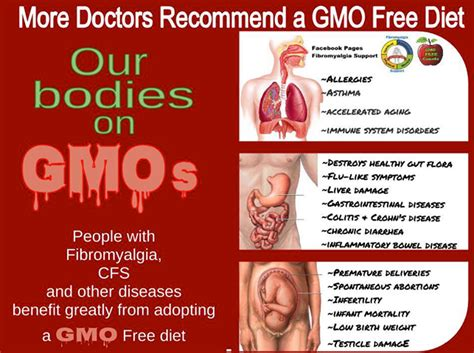 the health risks of genetically modified gmo foods detox from damaged dna cells fast 0medz0
