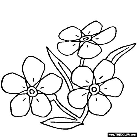 flower coloring pages color flowers online page 1 flower coloring pages color flowers online page 1