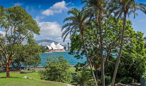 royal botanic garden top things to see do during sydney sydney