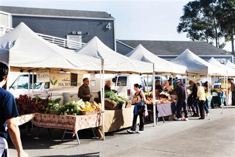 how to decorate a market tent perryville farmers market receives board approval for shade canopy news perryvillenews