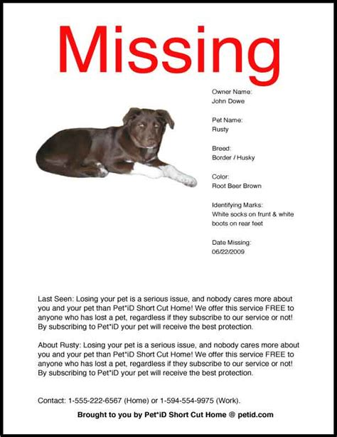 missing why dogs go missing and how to find them books pet id cut home a pet registry for pet owners