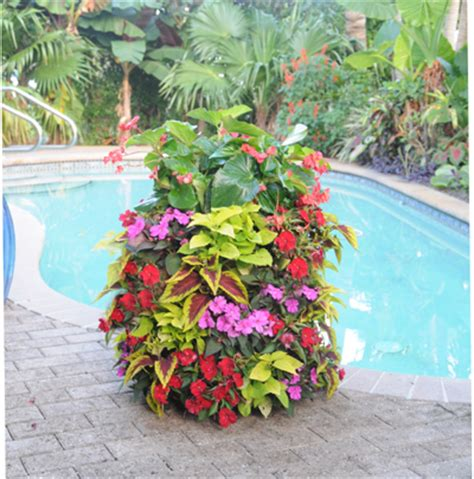flower tower planter basic basket planters flower tower