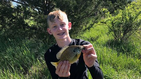 big bluegill  farm pond iowa fishing youtube