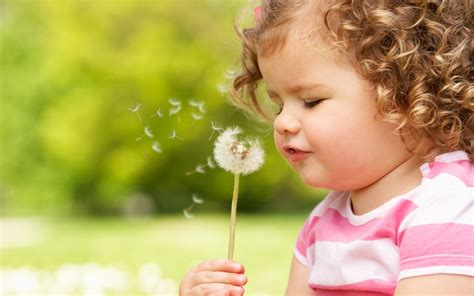 child s the child blows on a dandelion wallpapers and images