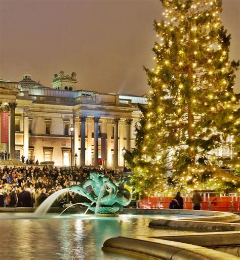tree trafalgar square tree lighting carols who