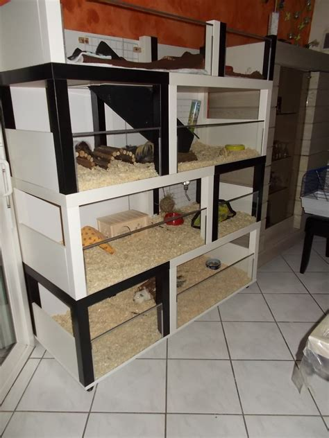 un meuble 224 cochon d inde 224 fabriquer 224 petit prix