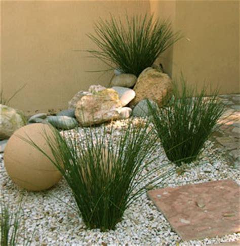 imagenes de jardines minimalistas pequeños fotos de jardin zen