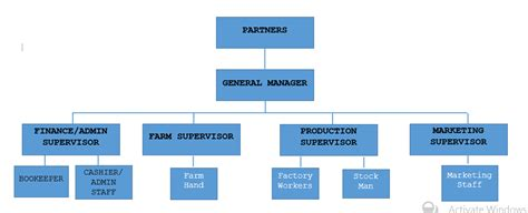 companies structure the organizational structure and the management of cc