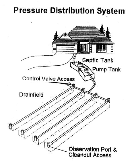 lillys septic tank service septic systems