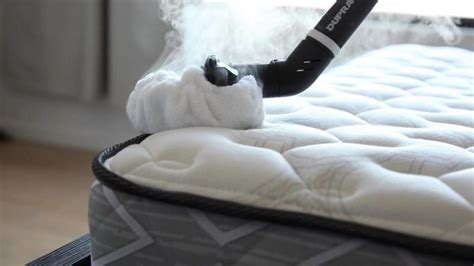 Cleaning Out Of A Mattress by How To Clean A Mattress Urine Stains Deodorize And Fleas Removal