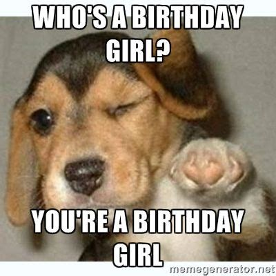 Birthday Dog Meme - best 25 happy birthday dog meme ideas on pinterest
