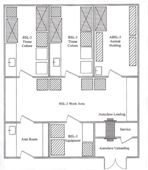design layout microbiology lab 5 laboratory regulatory oversight finding the balance