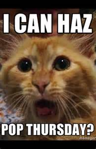Internet Cat Meme - related keywords suggestions for internet cat memes