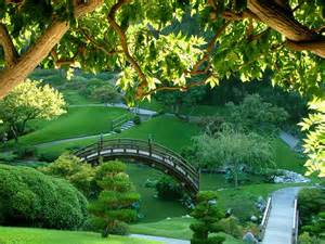 Jardin Botanical 3 1 El Monje En Busca De La Paz Perdida