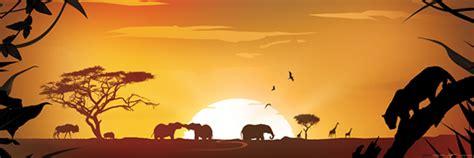 safari themes gallery canvas design safari theme on behance