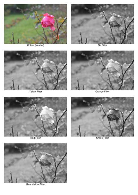 black white filters on the nikon d7000 one