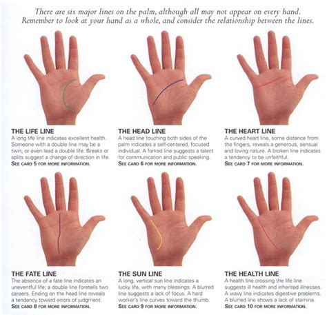 lines in palmistry reading major palm reading line line of in palm reading