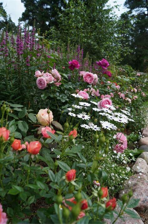 Best Flower Gardens 214 Best Garden Images On Flowers Garden Ideas 82 Chsbahrain