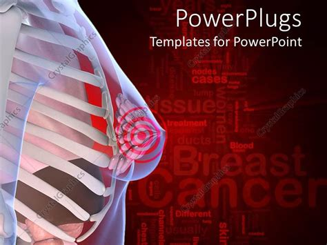 Powerpoint Template Anatomy Of The Female Breast With A Anatomy Powerpoint Templates