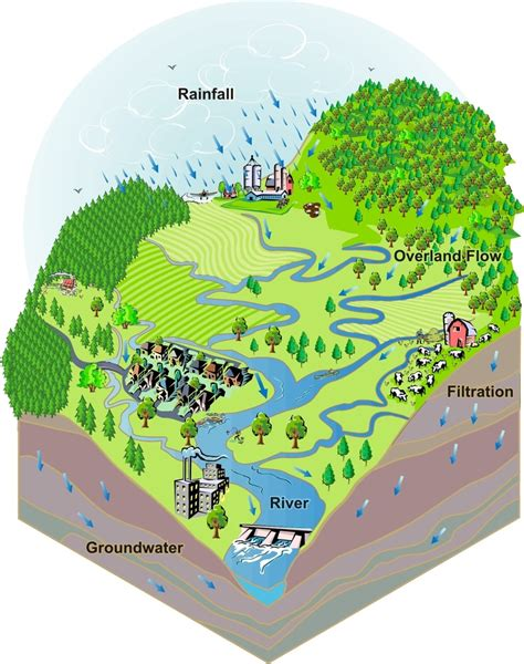 world river watershed map the wonderful world of water beaver river watershed alliance
