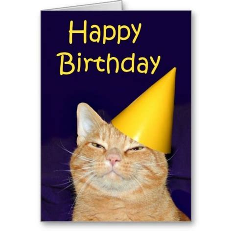 printable birthday cards cats card invitation design ideas funny cat birthday cards on