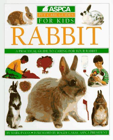 Mk N Kid Stelan Rabbit rabbit aspca pet care guides for reviews