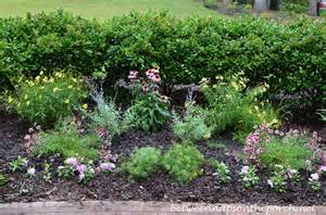 small perennial garden ideas photograph perennial garden
