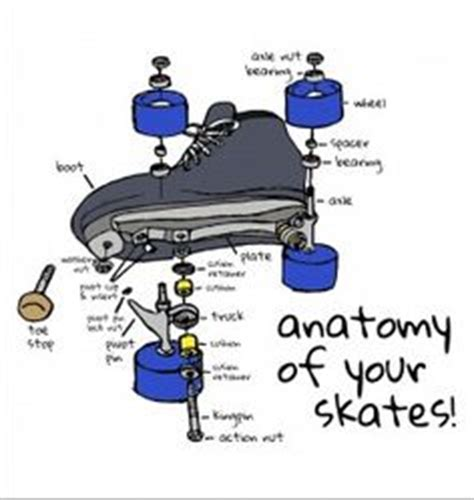 longboard parts diagram image gallery skate parts