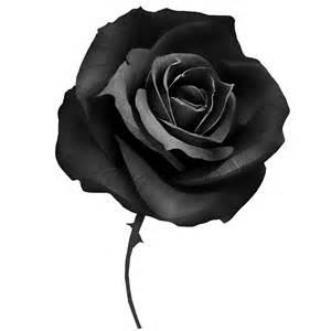 черно белая схема вышивки розы