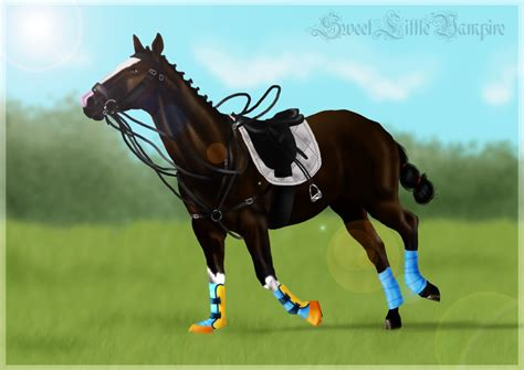 More Ponies For Polo by Commission Polo Pony By Sweetlittlevire On Deviantart