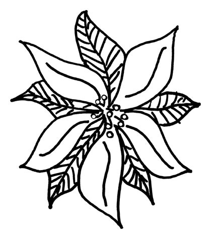 poinsettia leaves coloring pages christmas poinsettia leaves coloring book page