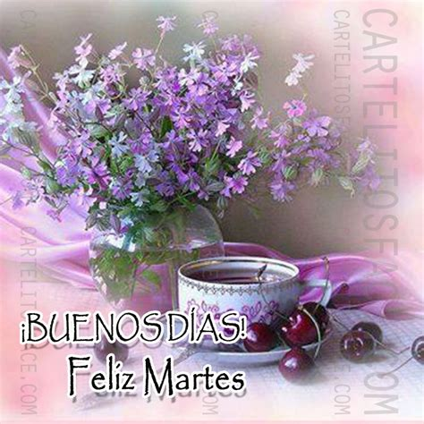 imagenes de feliz sabado para compartir en facebook the gallery for gt buenos dias chistosos