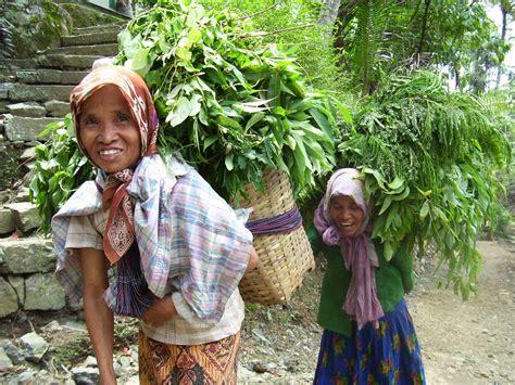 orang desa nasib perempuan pengurus dan penerus kehidupan lppslh