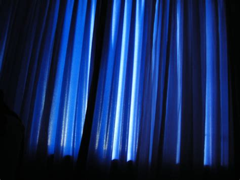 Light Blue Curtains Dark Brown Hairs