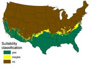 pythons in florida map burmese pythons invading california further thoughts