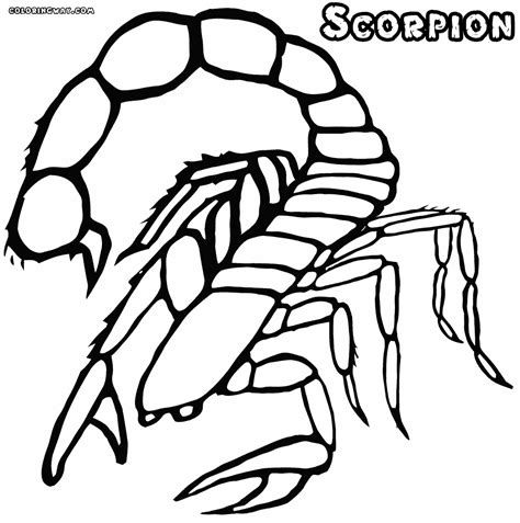 scorpion coloring pages coloring pages to download and print