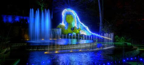 Botanical Garden Lights by Garden Lights Atlanta Botanical Garden