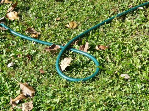 Garden Hose Irrigation Garden Hose Hose Irrigation Free Stock Photos In Jpeg